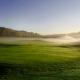GolfStars STAR-klassificering – Ny banskötselpolicy