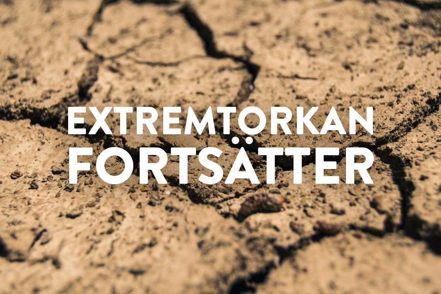 Extrem torkan fortsätter, inget regn i sikte!